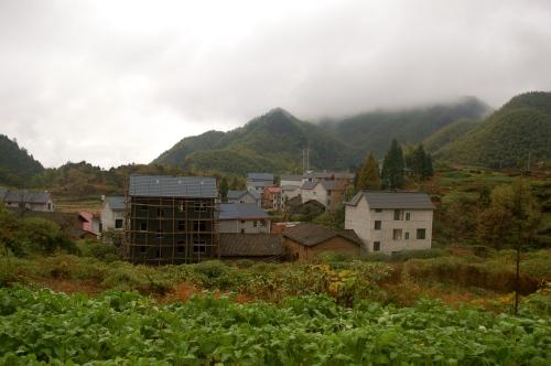 Village 1 - homes